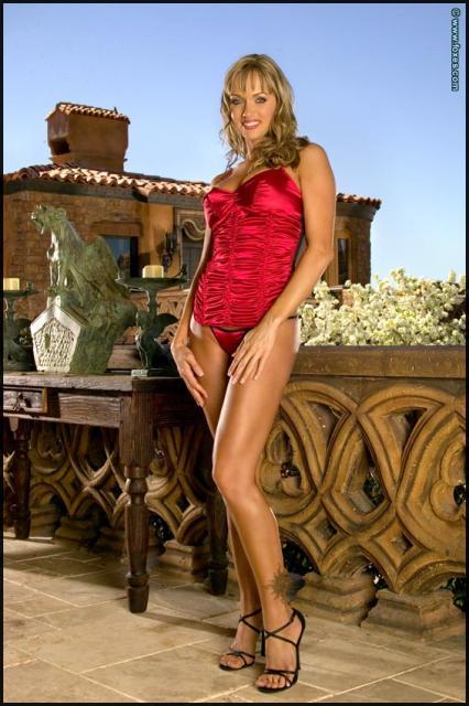 Девушка с большими сиськами в шёлковом корсете эротично позирует